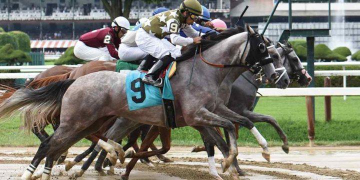 Horse Racing Exotic Bets – Mastering the Basics