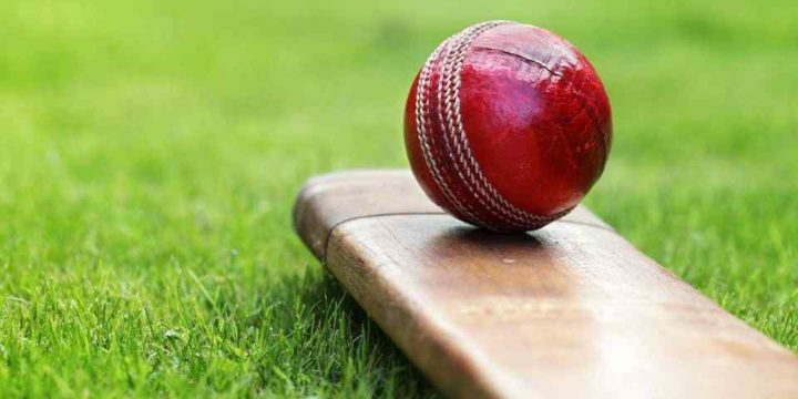 How to Predict The Cricket